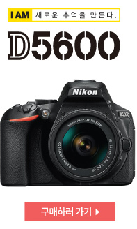 D5600 구매하기