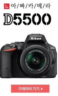 D5500 구매하기