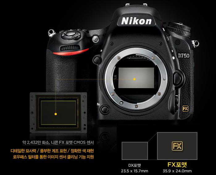 약 2,432만 화소, 니콘 FX 포맷 CMOS 센서, 디테일한 묘사력 / 풍부한 계조 표현 / 정확한 색 재현 /로우패스 필터를 통한 이미지 센서 클리닝 기능 지원, DX포맷:23.5 x 15.7mm / FX포맷:35.9 x 24.0mm